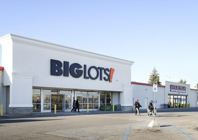 Pipestone Plaza shopping center with Big Lots in Benton Harbor MI